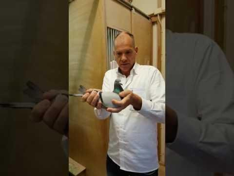 Jan Hooymans handling Birdy