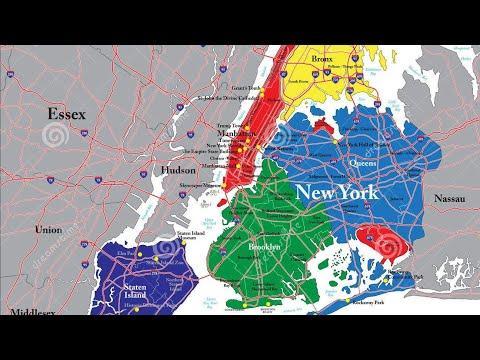 Wysylka shipping golebi racing pigeons NEW YORK KULBACKI CHAMPION PIGEONS TEL 0049 1511 290 1511