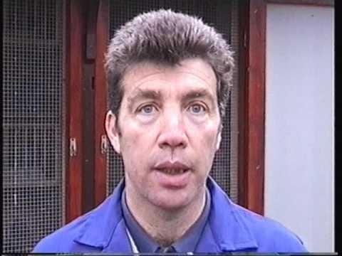 Video 213: Rod Berry of Ashford: Premier Pigeon Racer