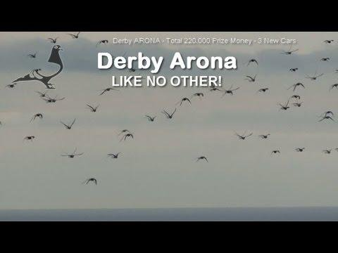 Derby ARONA-TENERIFE 2016 - Sea Race-4
