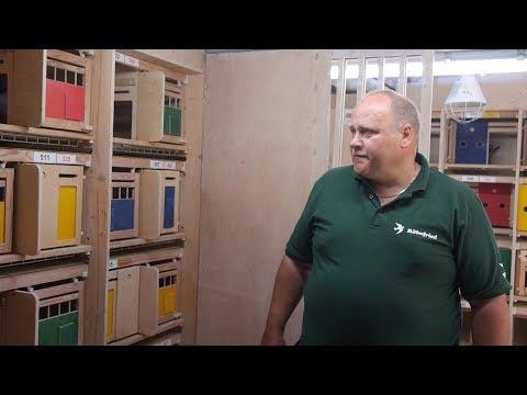 Roland & Denis Faber - komentarz po locie, gołębniki