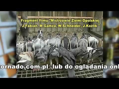 Jerzy Koźlik - Opole