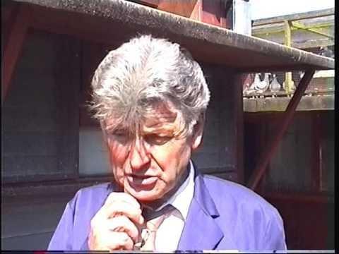 Video 238: George Brownlie of Carluke: Premier Pigeon Racer