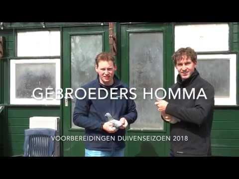 Voorbereidingen vliegseizoen 2018 - Gebroeders Homma #1
