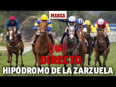Las carreras del Hipódromo de la Zarzuela de Madrid, en directo | MARCA