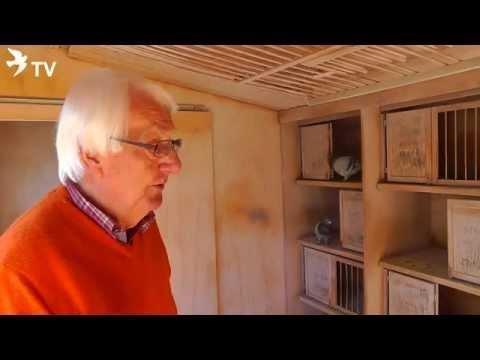 Wolfgang Roeper Blick in den Witwerschlag (Brieftauben)