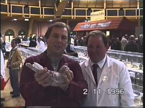 Video 63: National Racing Pigeon Shows 1995 / 1996