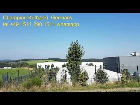 Super loty upał +36c Rasa Kulbacki najlepsze 79 gołębi w oddziale 3.Mistrz Regionu 405 CHAMPION