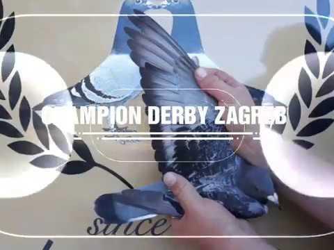 Victory Derby Zagreb 2018