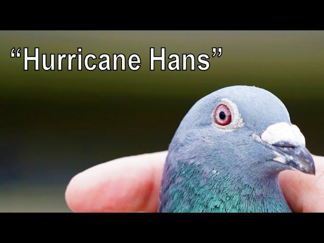 Vlog #75 HURRICANE HANS Dedicated His Prize To Deceased Hans Boeders