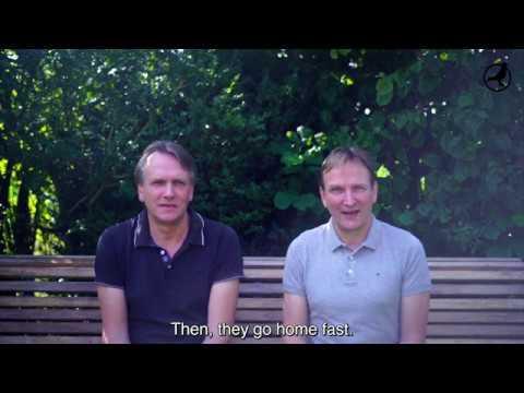PIPA TV: André & Bert Leideman