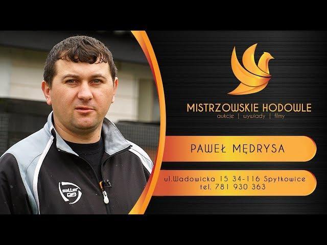 Mędrysa Paweł - cz.3. - SPYTKOWICE - Mistrz Polski 2017