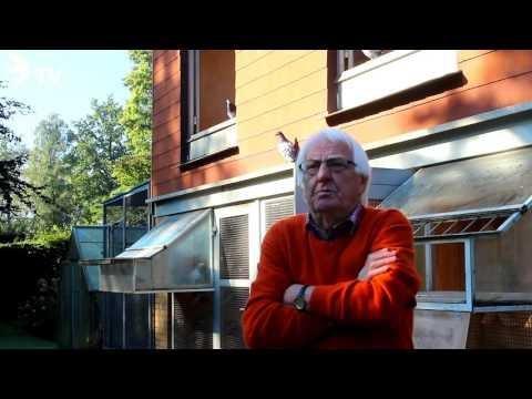Wolfgang Roeper Interview Part 2/26 1.Deutscher Meister Jährige 2015 (Brieftauben)