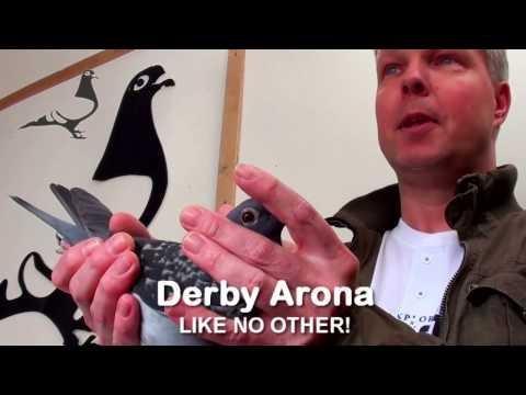 Interview met tweede prijs Winnaar Derby Arona 2014