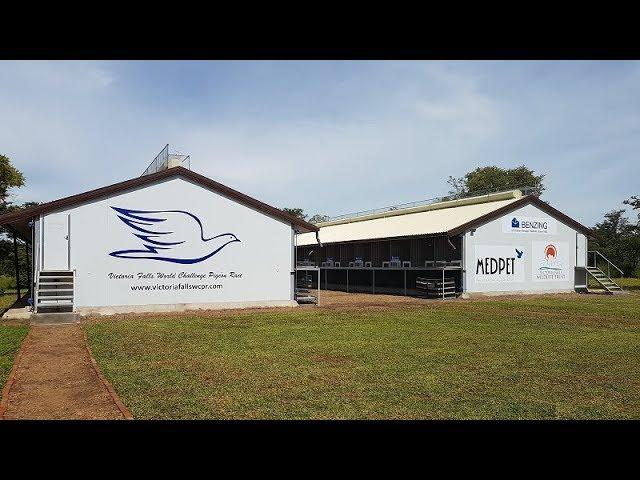 Victoria Falls World Pigeon Race Promo 2017/2018