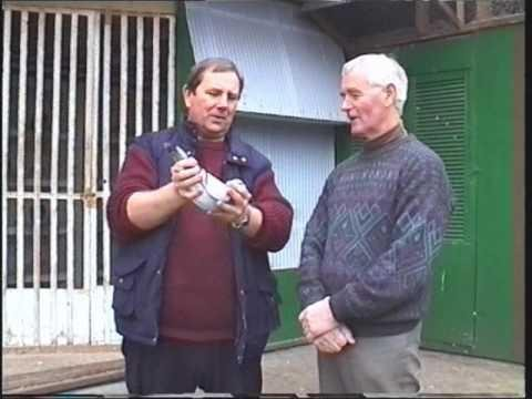 Video 166: Pigeon Loft Visits In 1998