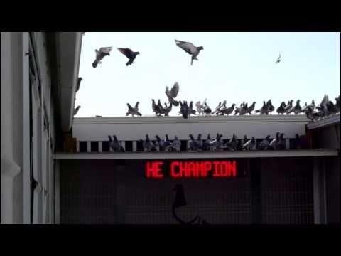 Arona-TENERIFE 2011 - 4th Training 25 Km 22-Dec-2010 Falcons Attack