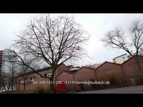 Zeitlupenvideo Sporttaube im Flug Gołąb sportowy wlocie 1/8 prędkości Zeitlupe slow motion 1/8 1/4