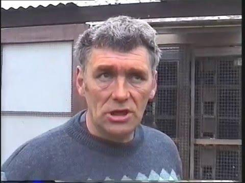 Video 87: Jim Donaldson of Scotland: Premier Pigeon Racer
