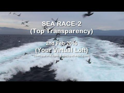 Sea Race-2 Derby ARONA-TENERIFE 2016