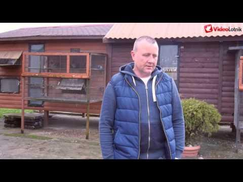 Wojciech Ziobroniewicz - zwycięzca WG Centrum 2015 - PZHGP 014 Stawiski