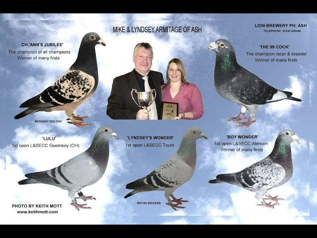 Video 374: Mike & Lyndsey Armitage of Ash: Premier Pigeon Racers