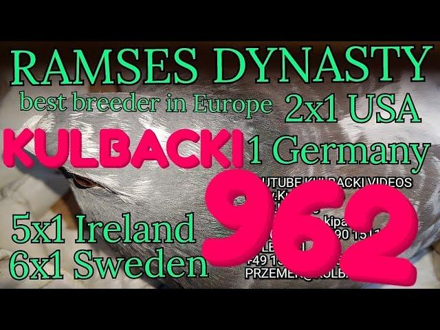 962,father:RAMSES X CRACK mother:RAMSES X STAMPARA,Ramsesa14x1. 6x1 Sweden 5x1 Irland 2x1 USA 1xGER.