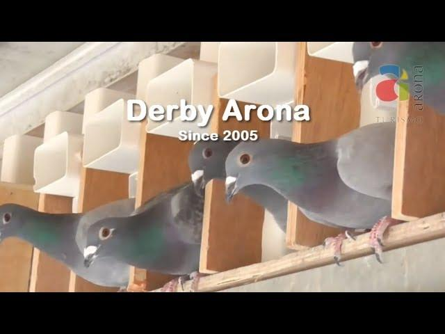Derby ARONA Since 2005 - The State of the Art in Pigeon Racing Sport